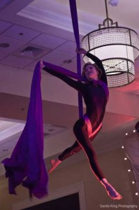 Aerial Silks Aerial Fabric Performance for Corporate Event in Charleston SC Ballroom